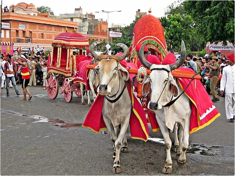 Teej in Rajasthan