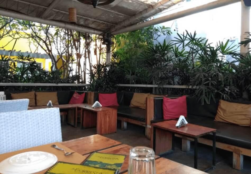Forresta Kitchen & Bar jaipur