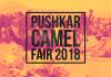 Pushkar Camel Fair 2018 photos