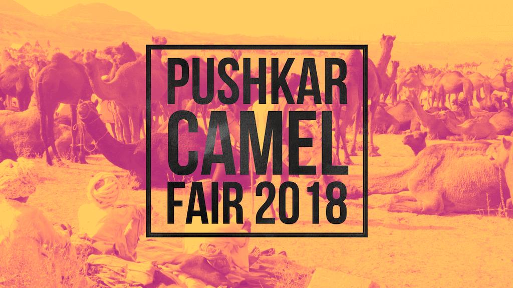 Pushkar Fair 2018: Answering Your Pushkar Camel Fair Questions